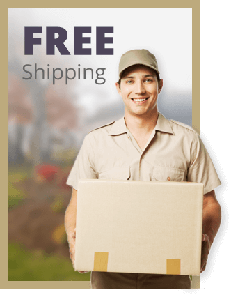 Image Showcasing Free Standard Shipping for Jewelry Repair orders